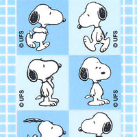 Snoopy 6 Pack Sticker Set