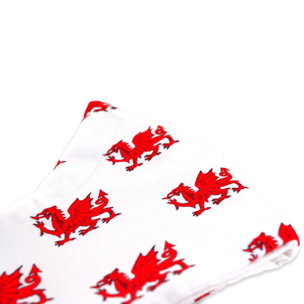 3 layer reusable Welsh flag face mask sasmask by screen and shield