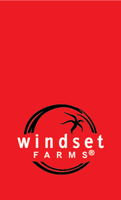 Windset Direct