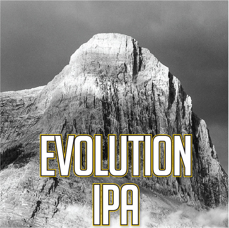 Evolution IPA (4 x 473ml Cans)