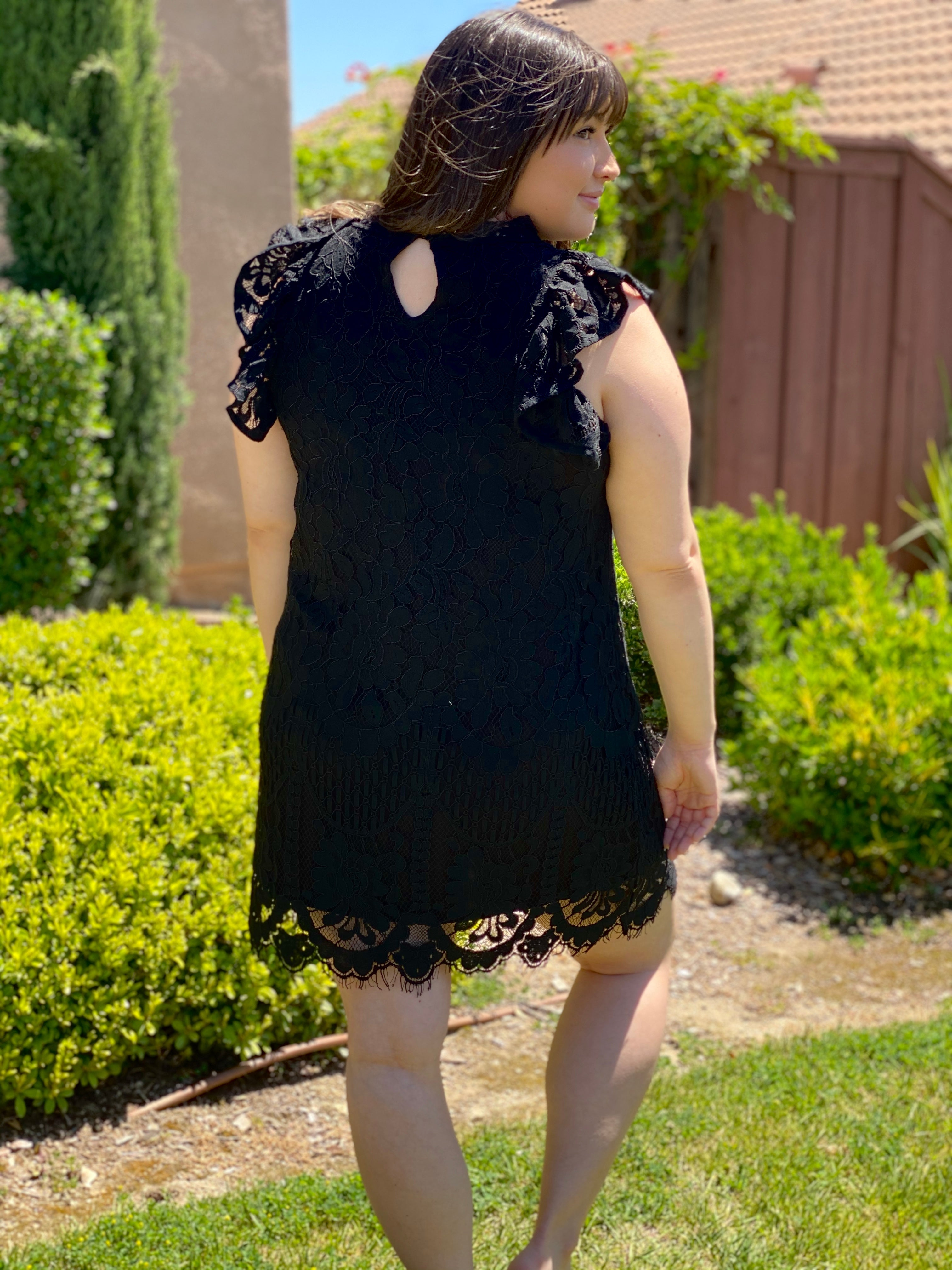 Black Scallop Lace Lined Dress