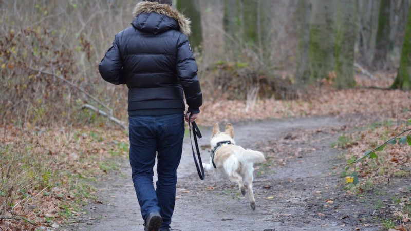 Woman walking dog on trail - What is a Dog Walk Really For? - PAW5