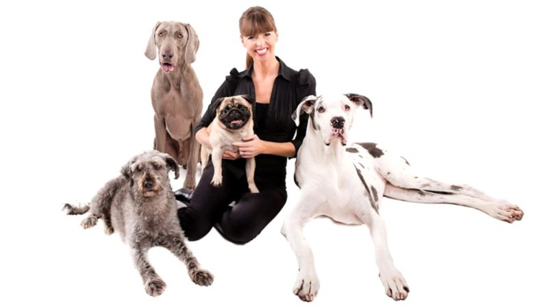 Woman surrounded by dogs - Raising Puppy Right: The Importance of Enrichment with Victoria Stilwell - PAW5