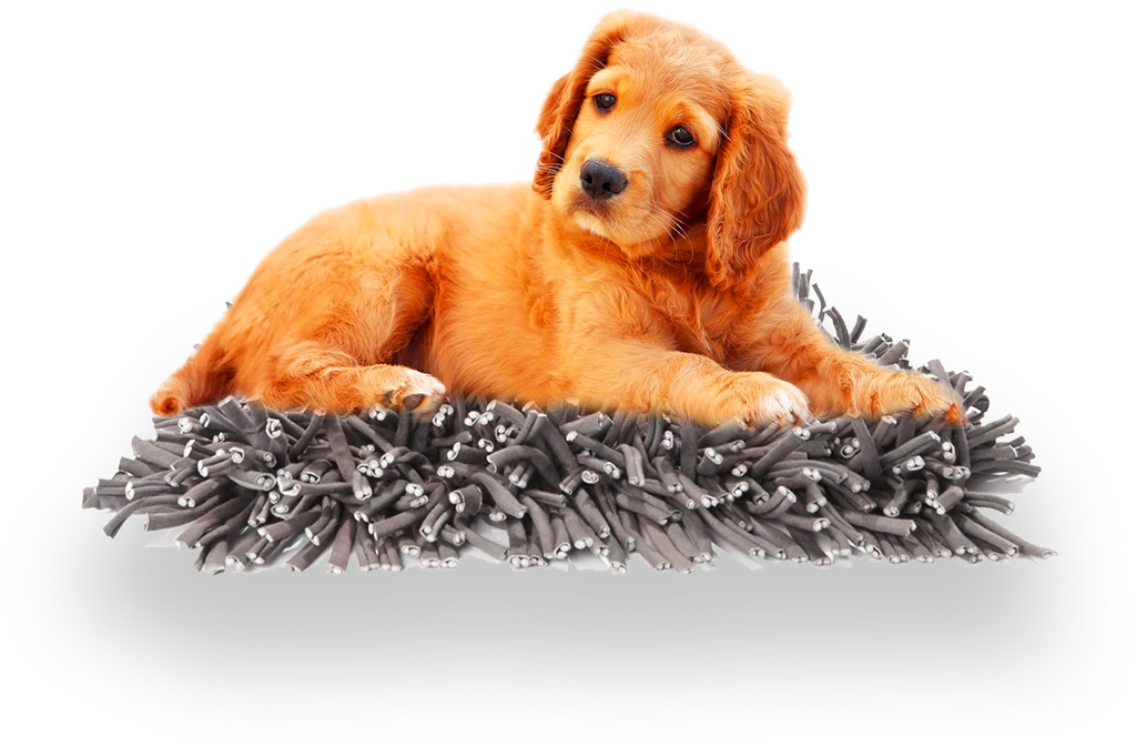 The Snuffle Mat™