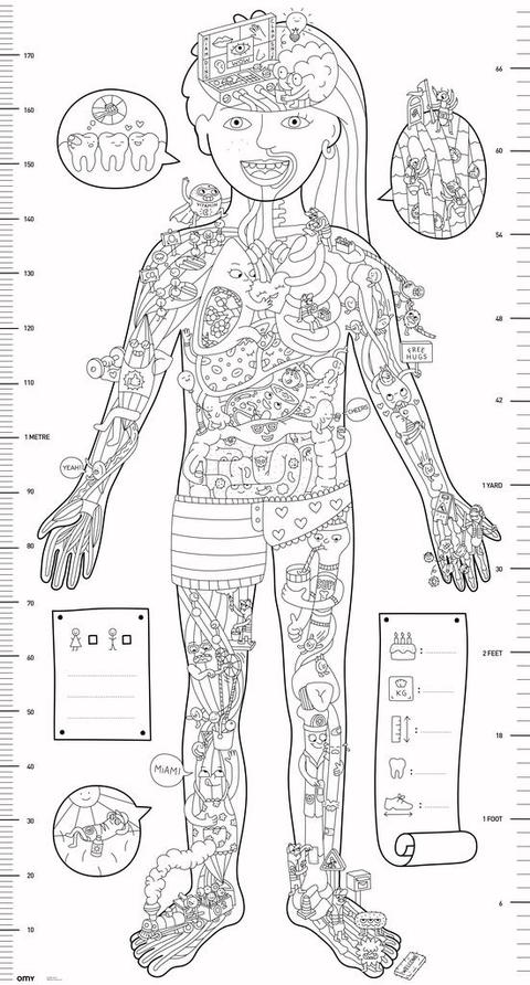 Coloring poster - My body - Omy