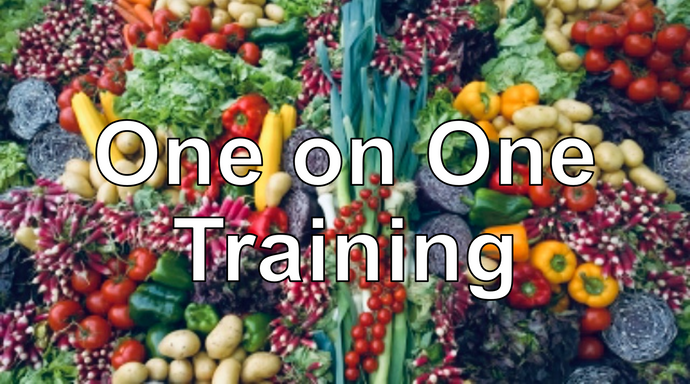 Full day one on one training