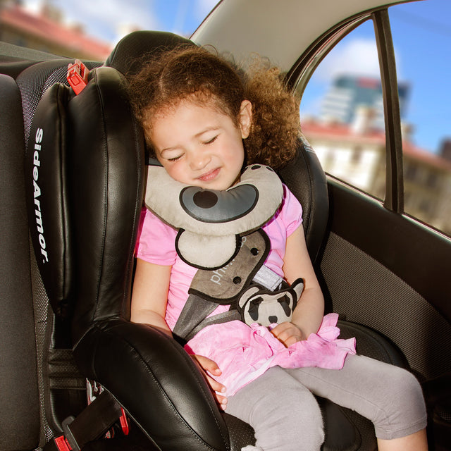 cozy combo - car seat support