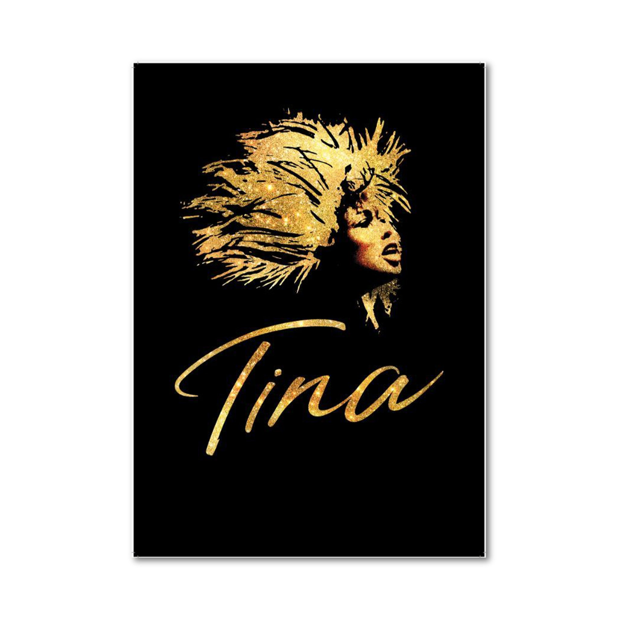 TINA Program Book Image
