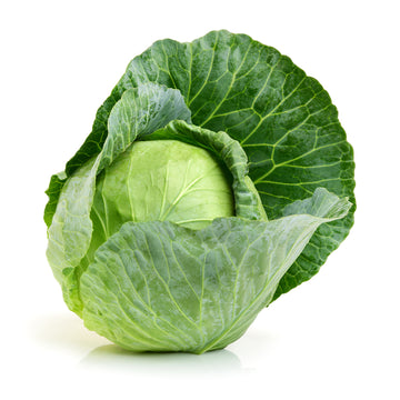 Cabbage, Green 1EA