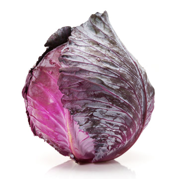 Cabbage, Red 1EA