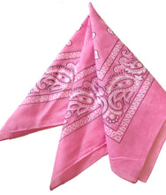Load image into Gallery viewer, HOUSE OF HORSES PINK BANDANA SCARF