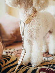 Dolly Blush Pink Martingale Collar