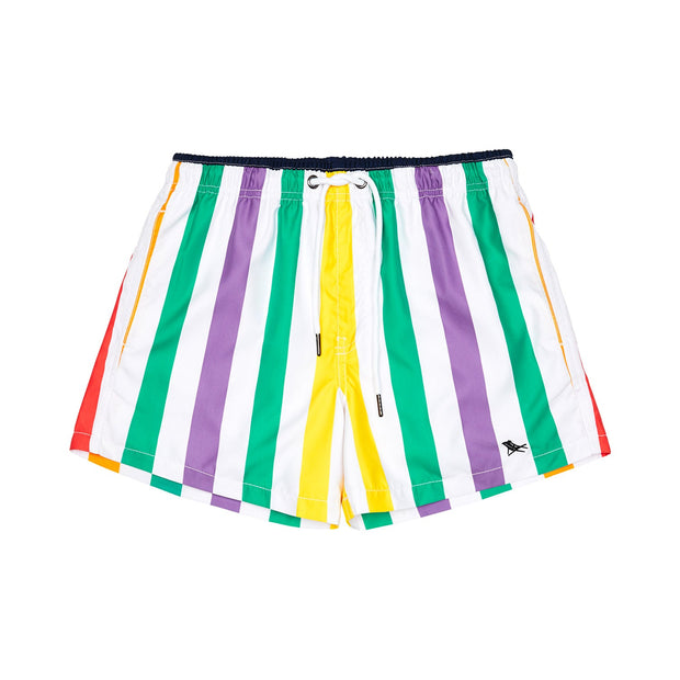 quick dry swim shorts rainbow