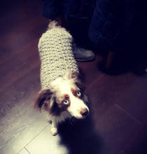 Load image into Gallery viewer, Handmade Waffle Knit Dog Sweater X-Small