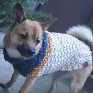 The '82 Deluxe Colorblock Wool Dog Sweater