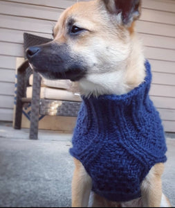 The Double Dutch Gansey Dog Sweater