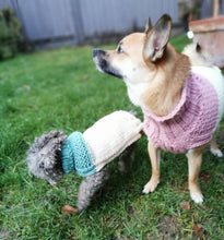 Load image into Gallery viewer, The Cupcake Collection Colorblock Gansey Dog Sweater