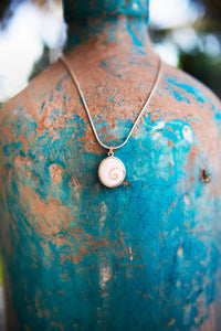 Ningaloo Operculum Shell Necklace