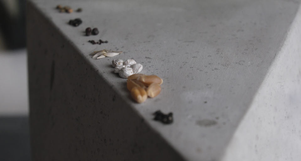 a variety of seeds lined up on stone concrete shape