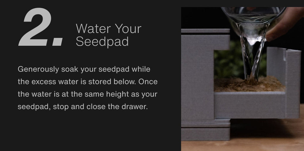 Water Your  Seedpad Generously soak your seedpad while the excess water is stored below. Once the water is at the same height as your seedpad, stop and close the drawer.