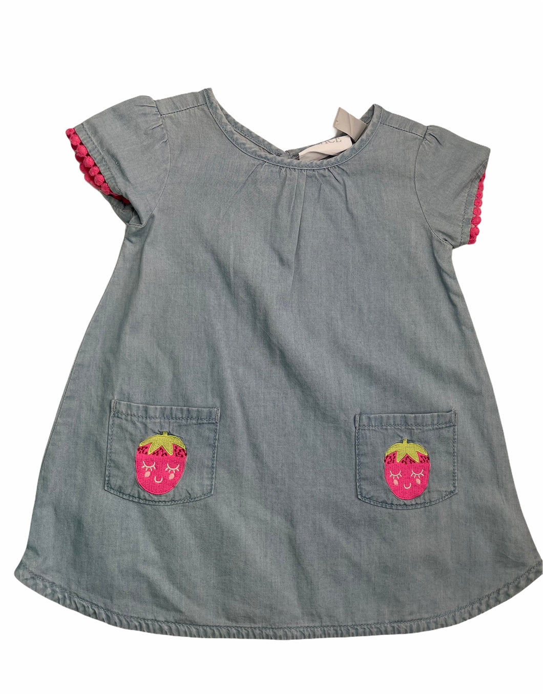 Strawberry Denim Dress