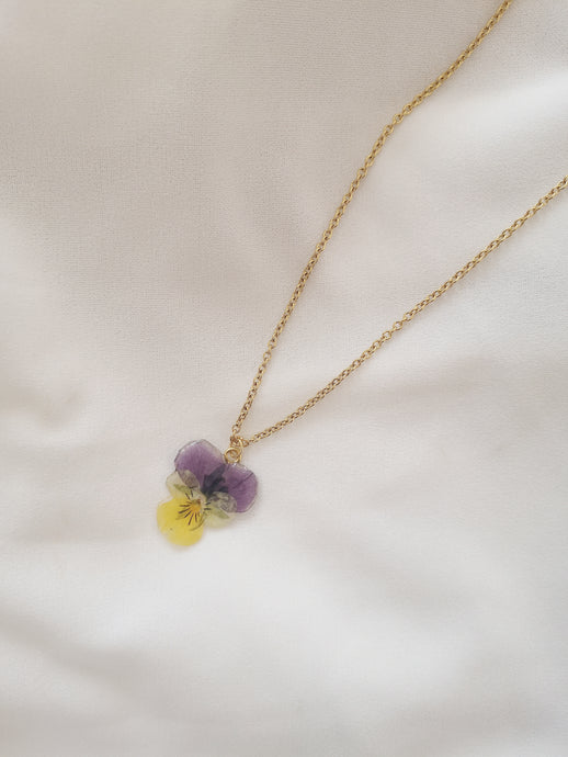 Collier PANSY