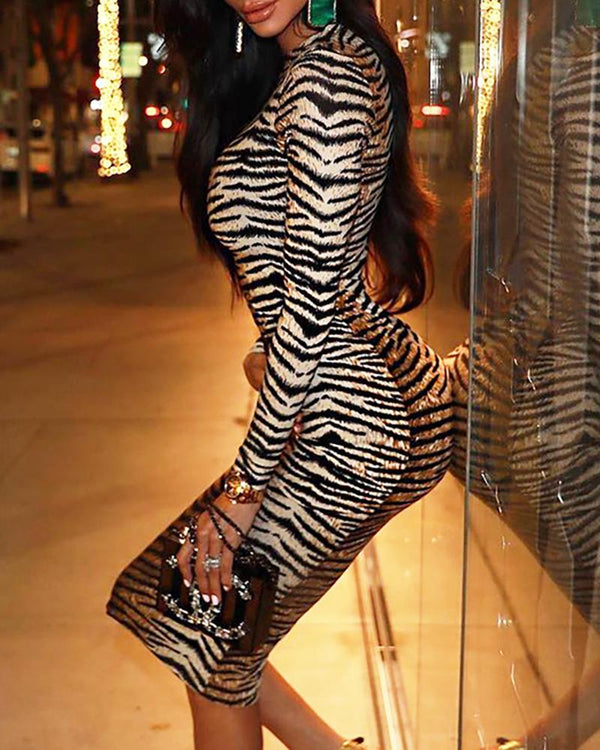 Animal Print Long Sleeve Slinky Dress