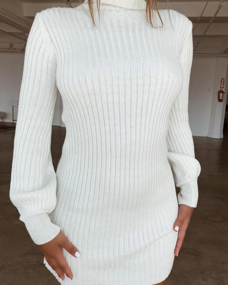 Solid Long Sleeve Turtleneck Sweater