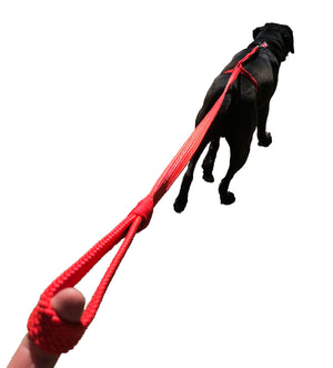 The Satori Premium No Pull Dog Leash™️