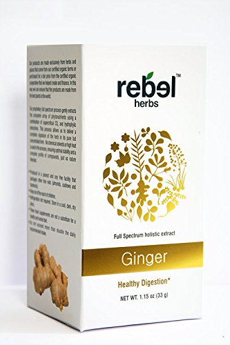 Ginger - Holistic extract powder