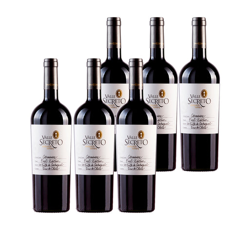 Valle Secreto FIRST EDITION CARMENERE X6