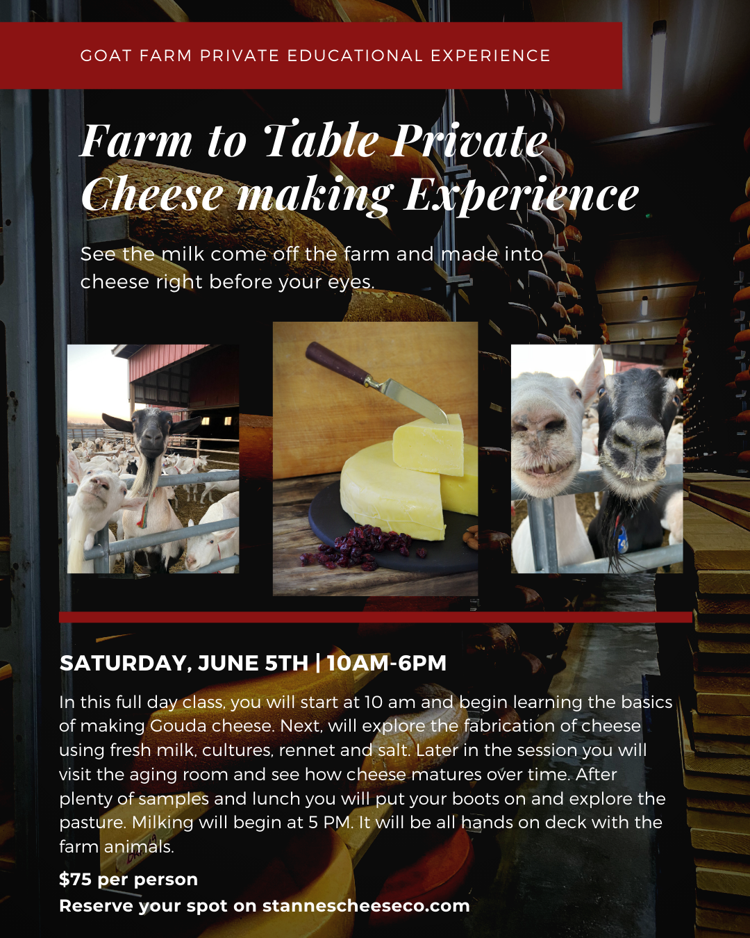 Farm to Table Private Cheese Making Experience | June 5th