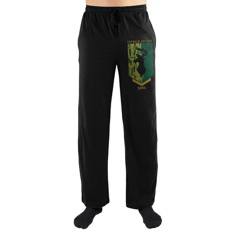 Dungeons & Dragons Emerald Enclave Sleep Pants