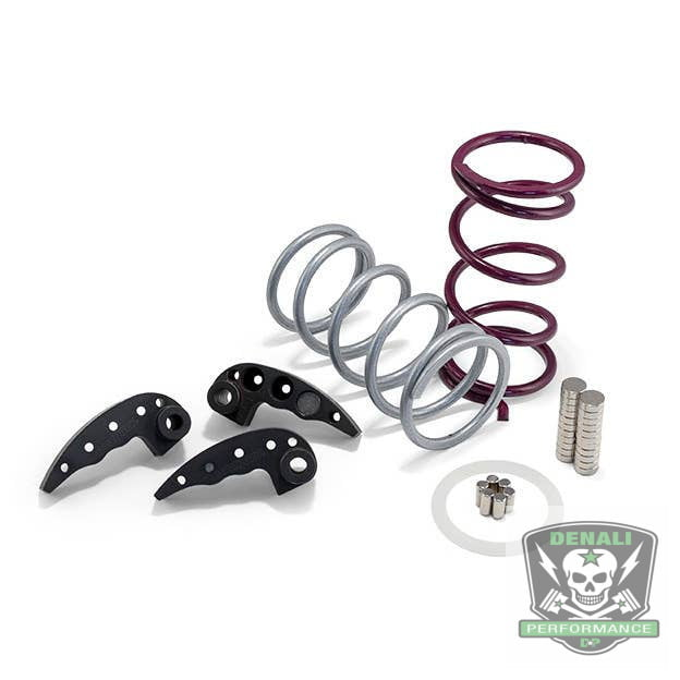 Polaris Ace/RS1 Clutch Kit