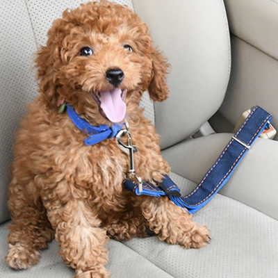 Pet Safety Seat Belt™