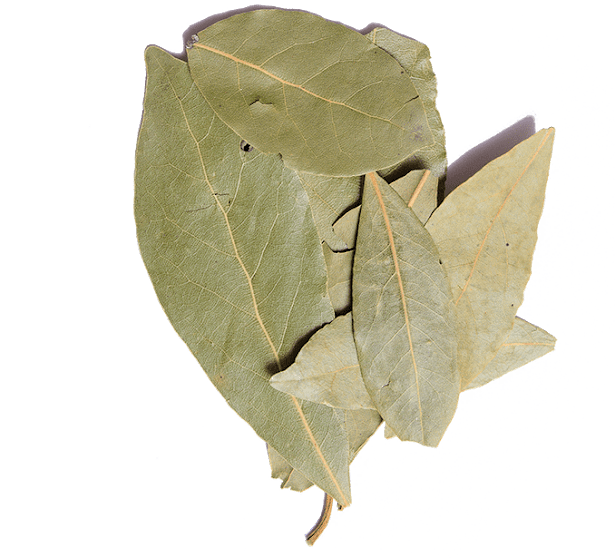 Handpicked Organic Bay Leaves from Greece