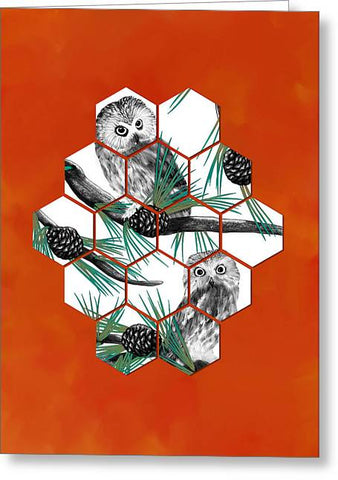 Cube Northern Saw-whet Owl - Greeting Card