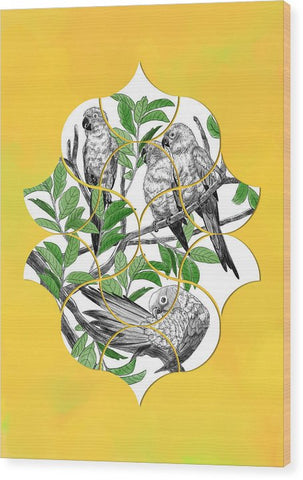 Fan Sun Parakeet - Wood Print