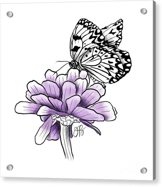 Butterfly on Zinnia - Acrylic Print