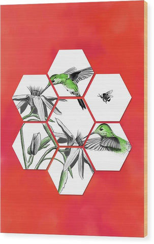 Honeycomb Hummingbird - Wood Print