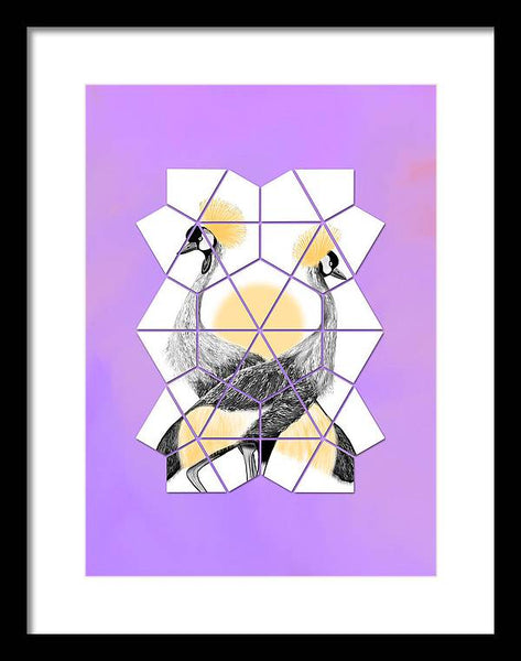 Kite Crowned Crane - Framed Print