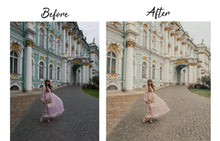 Load image into Gallery viewer, Festy Style Lightroom Preset