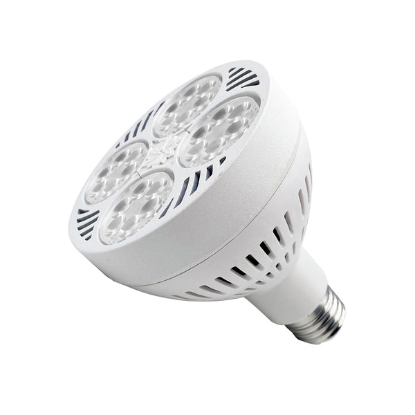 Full Spectrum LED PAR30 40W High Power