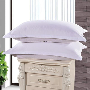 Light Blue Color Pillow Cases
