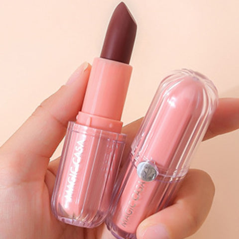 Exquisite Sexy Lipsticks Natural Matte Liquid Lipstick