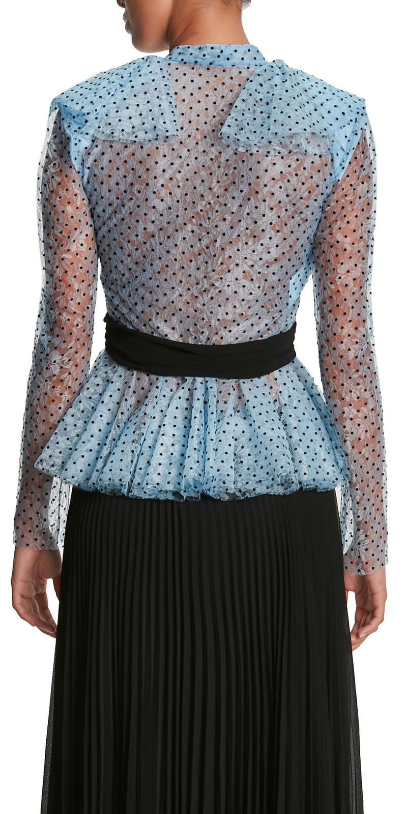Long Sleeve Polka Dot Tulle Top