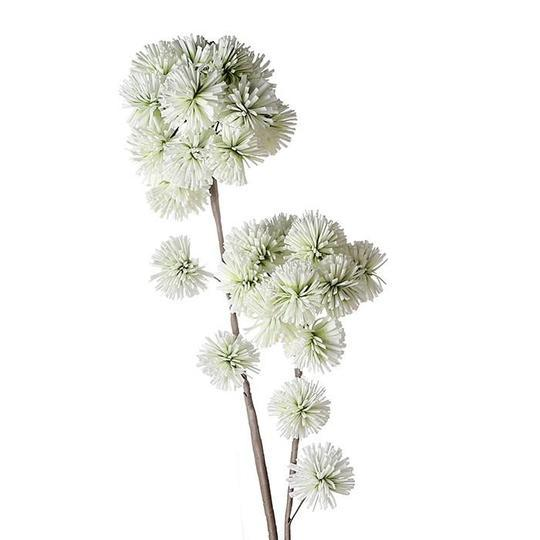 Light Green Ball shaped Blossoms £6.55