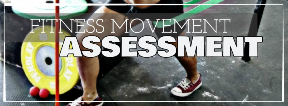 FITNESS MOVEMENT PROGRAMMING   (FMA)