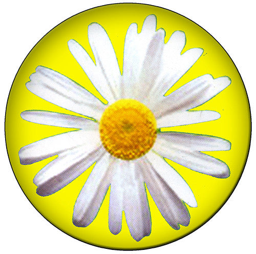 SPRING 2016: YEAR OF THE DAISY