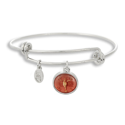The Adjustable Band Bangle Bracelet featuring the ancient Cancer astrology sign shows that your style is in the stars!